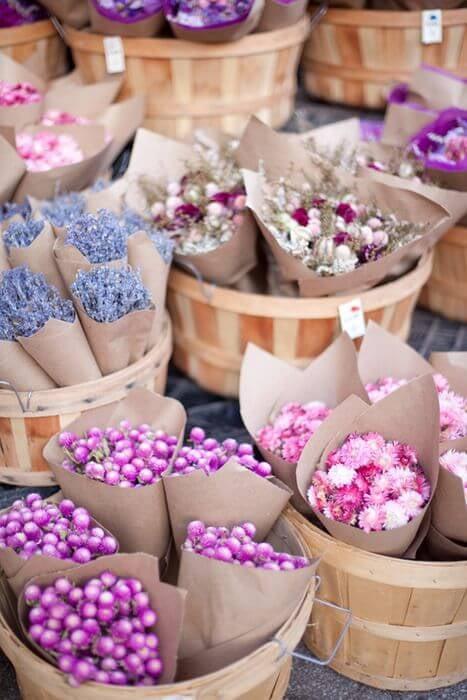 En Güzel Çiçekler ve Anlamları-1