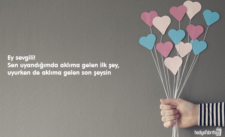 sevgiliye seni seviyorum mesaji