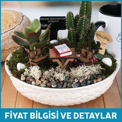 Bayan Öğretmene Hediye Minyatür Bahçe